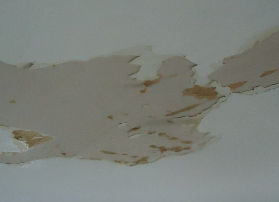 Preventing Water Damage on Your Ceiling